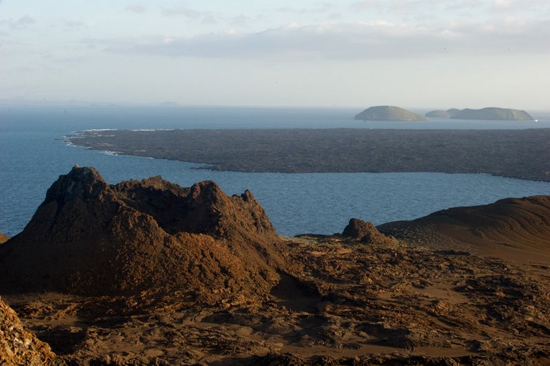 A Pillar of Life in the Galapagos Islands